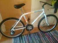 Vintage Raleigh Marauder Index bike bicycle