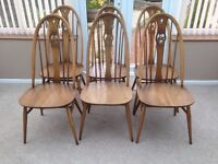 SIX ERCOL SWAN DINING CHAIRS IN GOLDEN DAWN