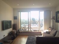 London Dalston/Hackney Down - Short let end of Oct16 until at least early Jan17 (£850 + bills)