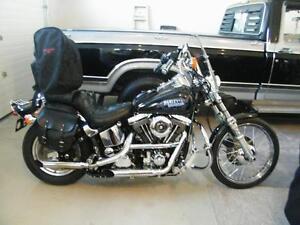 1987 Harley Davidson Custom Softail