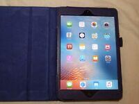 Apple iPad Mini 1st gen, Black/Slate, 16Gb, wifi, with case'