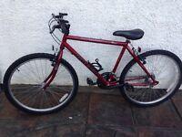 Raleigh Avalanche mans bike