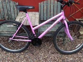Nice pink bike