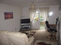 Lovely Double Room in my house in Newton Abbot with gardens nr town