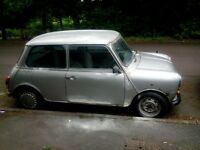 classic mini mayfair summer project