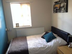 Modern, newly painted room to rent! Close to town, NEW MATTRESSES!!
