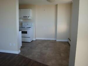 Great Incentives, renovated 2 bdrms in new Brewery District Edmonton Edmonton Area image 4