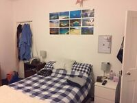 Double Room for Rent for 8 weeks (2 months) £118 pw