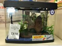 For Sale Aquarium panorama 40l with 3 fishes for cold water