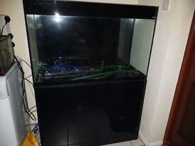 Aquael 215 litre fish tank