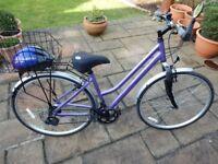 Ladies Arcote Freelander Bicycle
