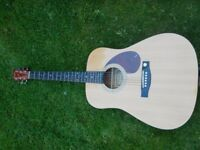 Tenson Dreadnought Natural Acoustic Guitar for sale. With cover and floor stand