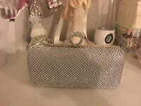 Silver bag and matching shoes