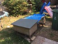Two rabbits, hutch, large run, food, bedding and accessories