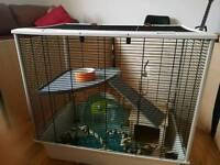 Rat cage + pen
