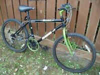 Bicycle Magna Vertical