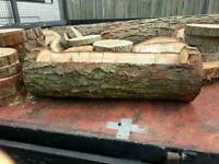 Log Slices and planters