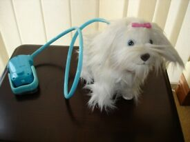 Fluffy Goes Walkie Dog