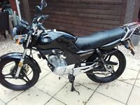 Yamaha YBR 125 in Black 124 Miles from NEW - IMMACULATE (See Photo's)