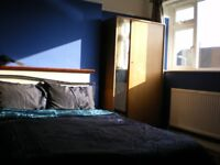 Large, Sunny Furnished Double Room (25 mnts from Central London)