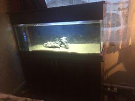 220 litre marine tank set up