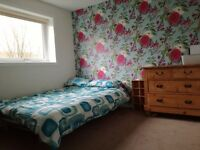 Double bedroom available in Penicuik
