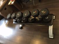 Bench and Freeweight set