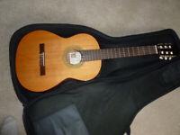 Manuel, Rodriguez and Hijos Acoustic Guitar
