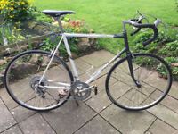 1980s Raleigh Equipe 12 Speed Racer - ready to ride!