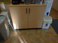 Medium Size Double Door Lockable Cabinet with Metal Shelf
