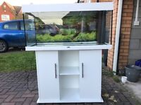Juwel Rio 180 Aquarium with cabinet in white, includes lighting, filter, heater and spare T5 bulb