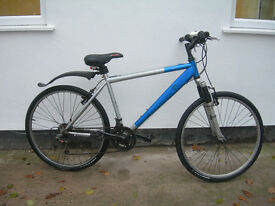 Adult Raleigh bicycle in good condition