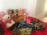 Build a bears and accessories