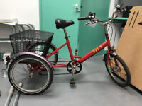 Pashley Adult Tri-1 Folding Tricycle