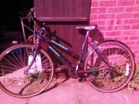 Lady's BIke 15 Gears in good condition