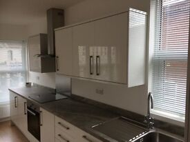 Newly renovated luxury 1 bed flat with new kitchen, windows, heating, bathroom, w. goods and terrace