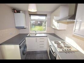 2 bed property to let - Pinxton - mid july onwards.