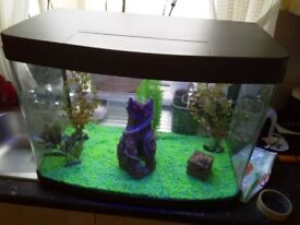2ft fish tank full tropical set up