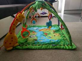 Fisher price rainforest play mat.