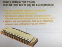 Harmonica lessons / tuition