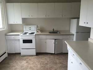 Two Bedroom Gloucester House  for Rent - 10513 124 Street