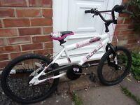 Girl's 20'' wheel bicycle, Flite Screamer