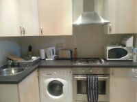 Large Studio flat to rent let in walthamstow central E17 off high street, clean quite and private