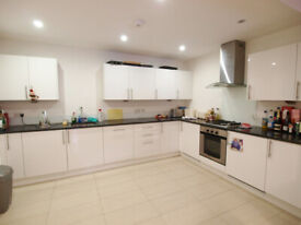 Stunning 3 Double Bed Flat Located In Finsbury Park, 2 Bathroom, Large Front Garden, Must See!!
