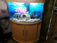 JEWEL TRIGON 190 LITRE CORNER FISHTANK IN BEECH