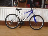 "Boys/small men's mountain bike - Refurbished 17"" Apollo FS26:"