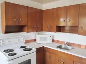 1 Bedroom -  - Michael Manor - Apartment for Rent Edmonton Edmonton Edmonton Area image 4