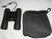 BINOCULARS 10 x 25 - 101M/1000M COMPACT & LIGHTWEIGHT 11cm LONG WITH CARRYING CASE & CLEANING CLOTH