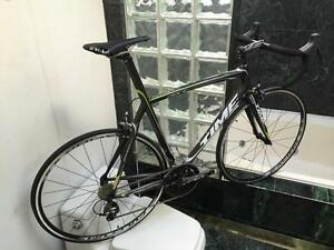 BRAND NEW (SIZE 56cm) TIME CARBON ROAD BIKE - SHIMANO ULTEGRA