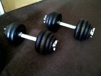 Free weight metal dumbbell set - 13.5 kg each